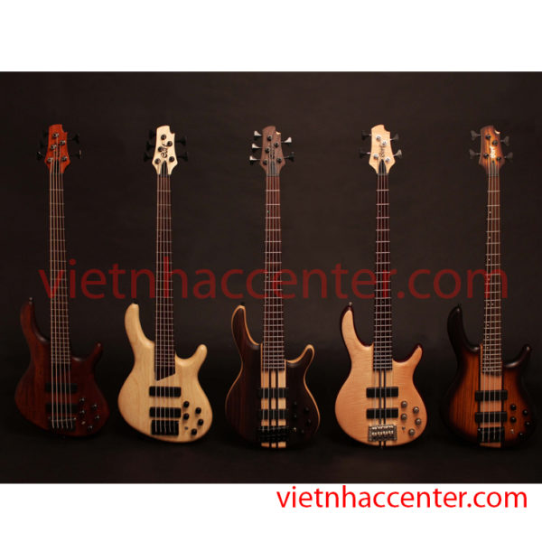 Guitar Bass Cort A5 Plus FMMH