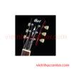 Guitar Điện Cort CR250