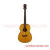 TransAcoustic Guitar Classic Parlor CSF-TA