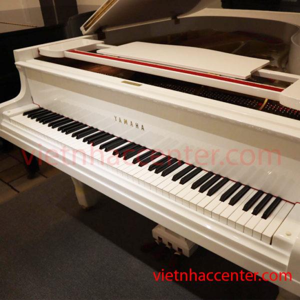 Gran Piano Yamaha G2 WH (màu trắng)