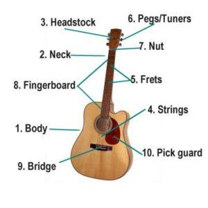 Các bộ phận trên đàn Guitar Acoustic