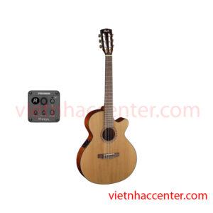 Guitar Classic Cort CEC5