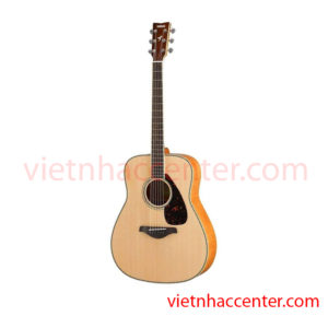Guitar Acoustic Yamaha FG840