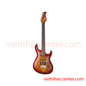 Guitar Điện Cort G-Custom